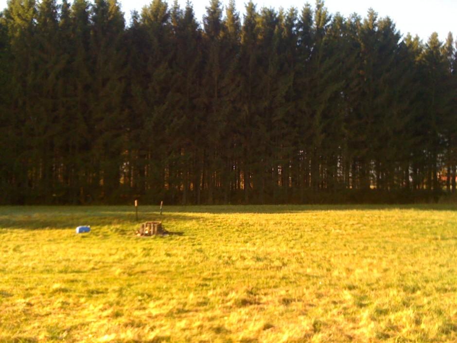 Skog och lantbruk
